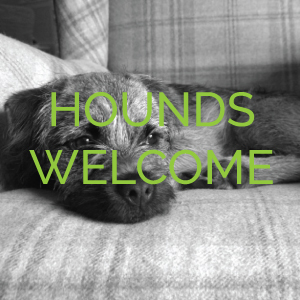 hounds-welcome